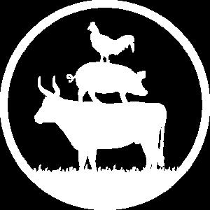 RT_STAMP